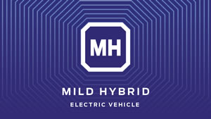 Ford Hybrid / Electric Vehicle